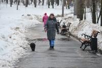 В Комсомольском парке прошёл рейд по выявлению собачников-нарушителей, Фото: 5