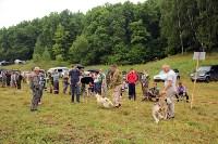 Выставка охотничьих собак под Тулой, Фото: 37