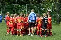 День массового футбола в Туле, Фото: 66