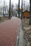 Ремонтные работы в ЦПКиО им. Белоусова, Фото: 8