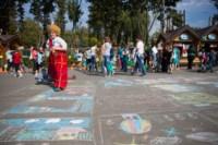 День города - 2014 в Центральном парке, Фото: 52