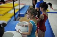 В Туле проверили ближайший резерв российской гимнастики, Фото: 13