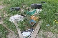 В тульском Заречье жители год добиваются ликвидации ядовитой свалки, Фото: 34