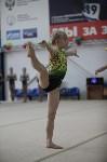 Соревнования по спортивной гимнастике на призы Заслуженных мастеров спорта , Фото: 21