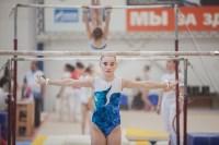 Первенство ЦФО по спортивной гимнастике, Фото: 109