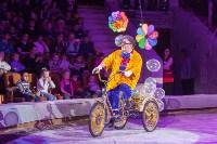 Туляков приглашают на новогоднее представление «Ёлка в цирке», Фото: 13
