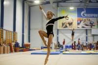 Спортивная гимнастика в Туле 3.12, Фото: 81