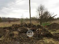 Чернский район, умерли 150 коров, Фото: 12