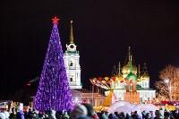 Главную ёлку Тулы открыли грандиозным фейерверком, Фото: 51