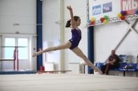 Соревнования по спортивной гимнастике на призы Заслуженных мастеров спорта , Фото: 34
