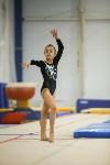 Спортивная гимнастика в Туле 3.12, Фото: 95