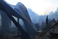 Пожар на хлебоприемном предприятии в Плавске., Фото: 21