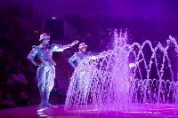 Шоу фонтанов «13 месяцев»: успей увидеть уникальную программу в Тульском цирке, Фото: 273
