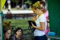 В Центральном парке Тулы проходит фестиваль помощи животным, Фото: 25
