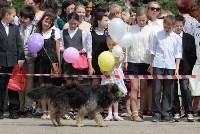 День города в Новомосковске, Фото: 4
