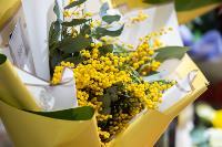 Цветы , Фото: 27