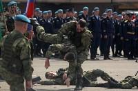 День Тульской дивизии ВДВ: на площади Ленина приземлились парашютисты, Фото: 74