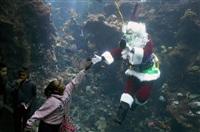 Невероятный Санта, Фото: 2