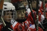 Международный детский хоккейный турнир. 15 мая 2014, Фото: 58