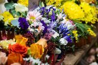 Цветы , Фото: 28