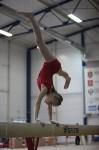 Соревнования по спортивной гимнастике на призы Заслуженных мастеров спорта , Фото: 80