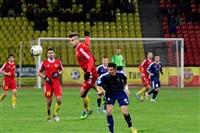 Матч «Арсенал» (Тула) – «Мордовия» (Саранск), Фото: 37