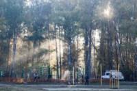 Центральный парк, утро, осень, Фото: 24