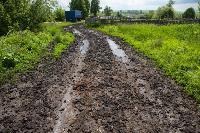 Коровы, свиньи и горы навоза в деревне Кукуй: Роспотреб требует запрета деятельности токсичной фермы, Фото: 29
