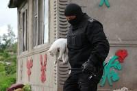 В Плеханово продолжается снос незаконных цыганских построек, Фото: 53