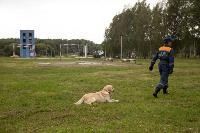 Испытания кинологов в Тульском спасательном центре, Фото: 55