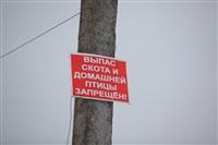 Тула, март 2014, Фото: 8