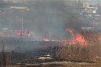 """Возгорание сухой травы напротив ТЦ """"Метро"""", 7.04.2014, Фото: 25"""