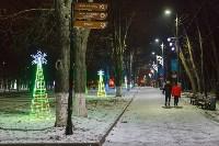 Украшение парка к Новому году, 15.12.2015 , Фото: 23