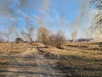 В Федоровке огонь с горящего поля едва не перекинулся на дома, Фото: 27