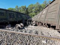 В Тульской области грузовой поезд сошел с рельсов, Фото: 36