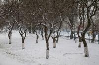 Мартовский снег в Туле, Фото: 26
