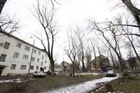 Аварийные деревья в тульских дворах, Фото: 4