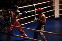 В Туле прошла матчевая встреча звезд кикбоксинга, Фото: 50