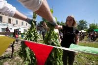 В Тульской области прошел фестиваль крапивы, Фото: 43