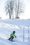 Первый этап чемпионата и первенства Тульской области по горнолыжному спорту, Фото: 29