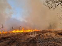 В Федоровке огонь с горящего поля едва не перекинулся на дома, Фото: 7