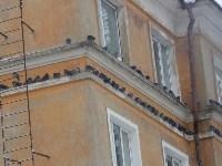Гирлянда от природы.))) Сравните с домами, украшеннымидюралайтом., Фото: 1