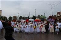 День Тульской области, Фото: 3