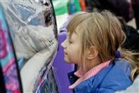 В Туле прошла международная выставка кошек «Зимнее конфетти», Фото: 13
