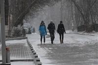 Снегопад в Туле, 28 ноября, Фото: 11