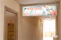 Кенгуру, Фото: 4