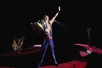 «Шоу Слонов» в Тульском цирке, Фото: 33