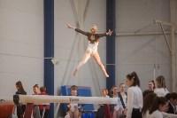 Первенство ЦФО по спортивной гимнастике, Фото: 100