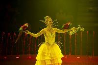 Шоу фонтанов «13 месяцев» в Тульском цирке – подарите себе и близким путевку в сказку!, Фото: 35