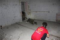 МегаДозор 2013, Фото: 1